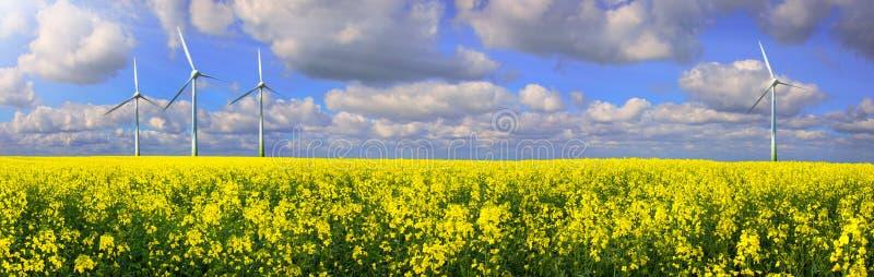 Raapzaadgebied met Windlandbouwbedrijf - Duurzame energiepanorama stock fotografie