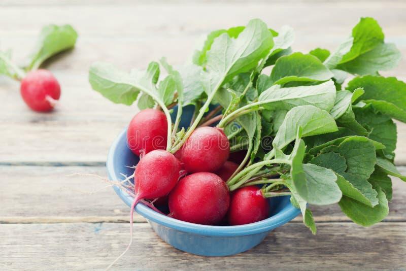 Rabanete vermelho na bacia azul na tabela de madeira rústica, alimento biológico, vegetais do jardim foto de stock royalty free