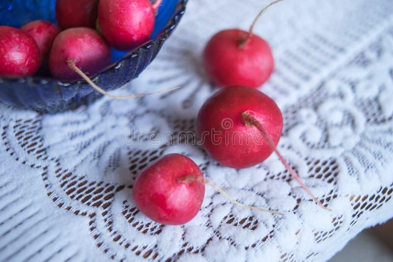 Rabanetes maduros frescos em uma bacia de salada de vidro azul e em uma toalha de mesa branca bonita fotografia de stock royalty free