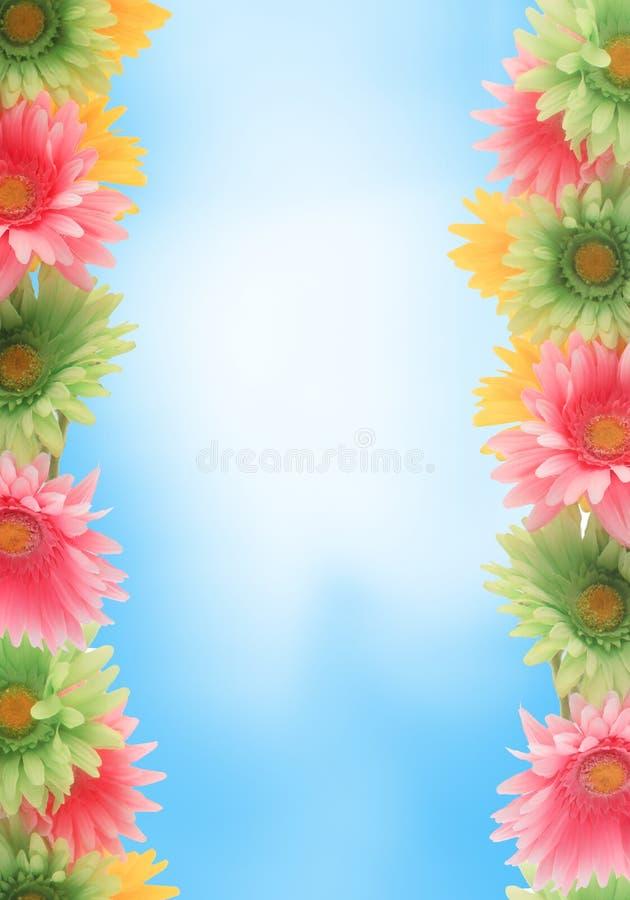 rabatowa kolorowa kwiecista wiosna zdjęcie stock