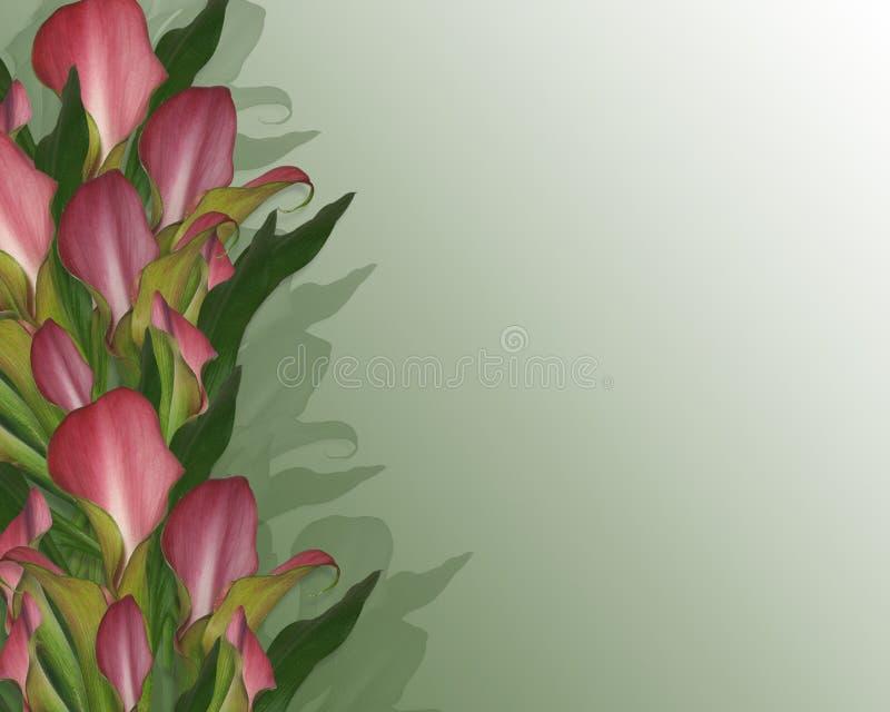 rabatowy kalii zaproszenia leluj target2777_1_ ilustracji