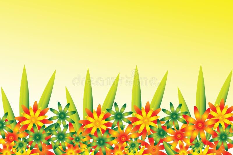 rabatowy kwiat royalty ilustracja
