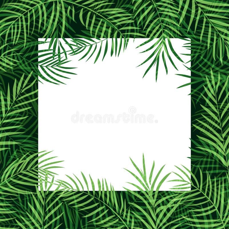 Rabatowy ramowy tropikalny palmowy liść royalty ilustracja
