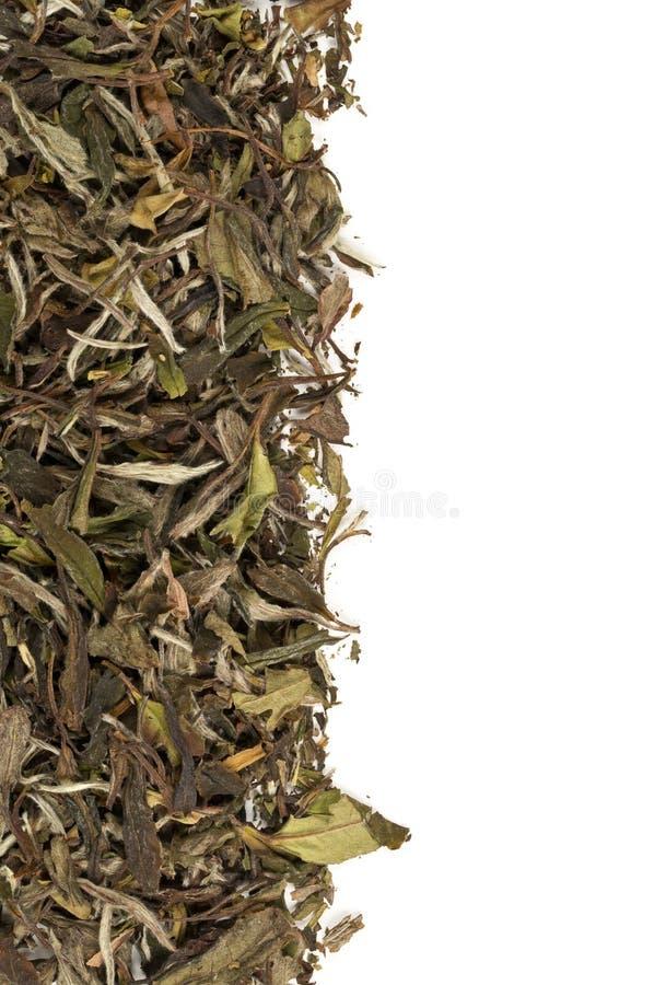 Rabatowy tekstury tło wysuszony, surowy biały herbacianych liści ramowy podsadzkowy mieszkanie nieatutowy z przestrzenią na biały obrazy stock