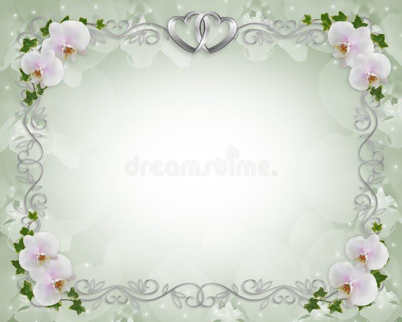 rabatowy zaproszenia bluszcza orchidei target213_1_