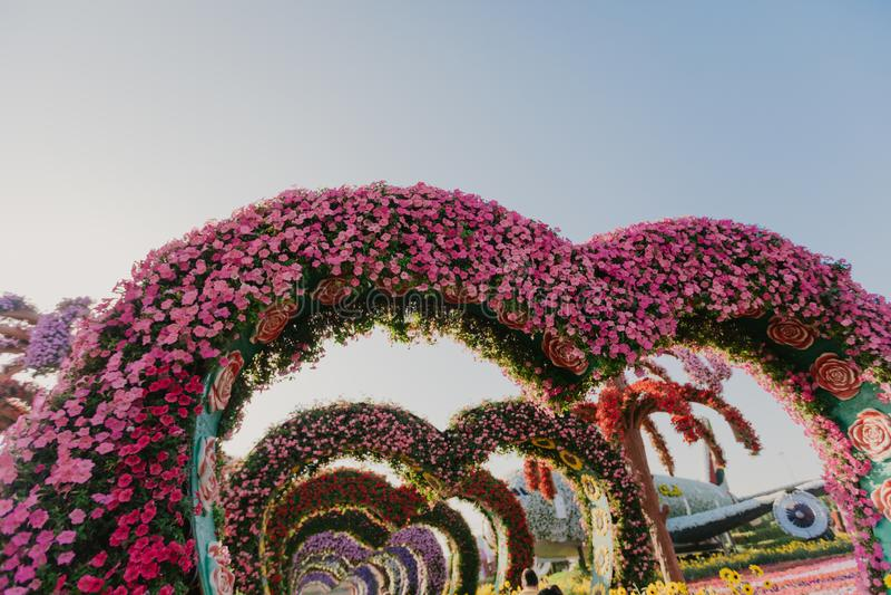 Rabatt med färgglade blommor arkivbild