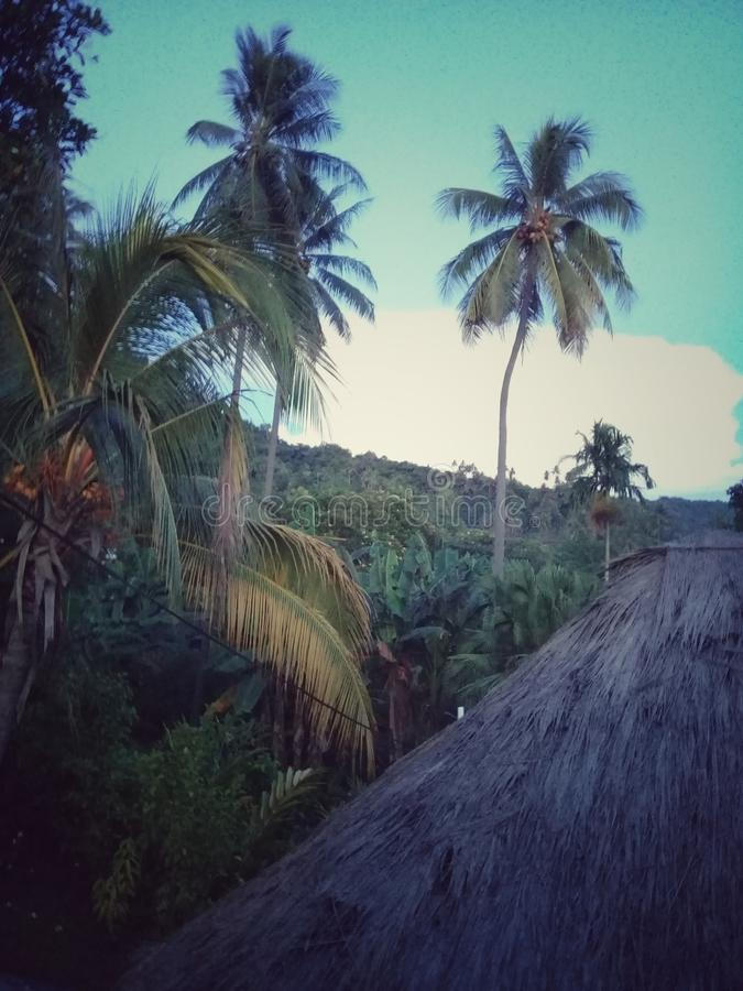 Rabaul obrazy stock