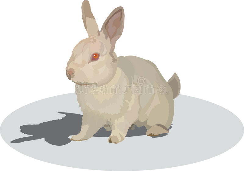 Download Rabbit stock vector. Image of fluffy, mammal, cowardly - 14123601