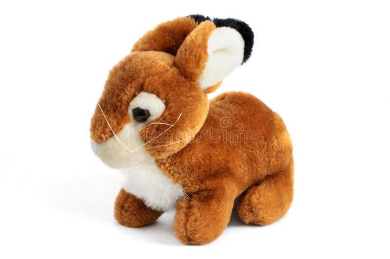 Download Rabbit stock photo. Image of bunny, rabbit, single, white - 14858528