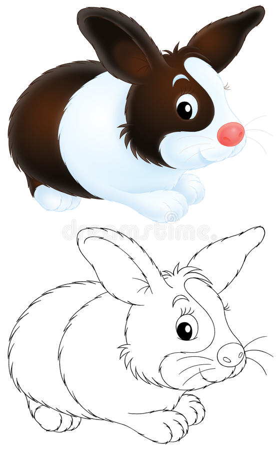 Download Rabbit stock illustration. Image of grass, drawing, farm - 19698303
