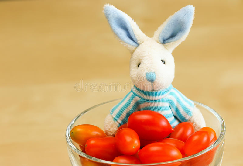 Rabbit doll with Cherry tomato royalty free stock photography