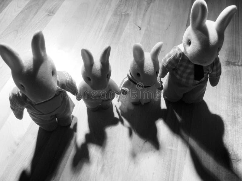 Download Rabbit family stock photo. Image of black, shadow, rabbit - 9684