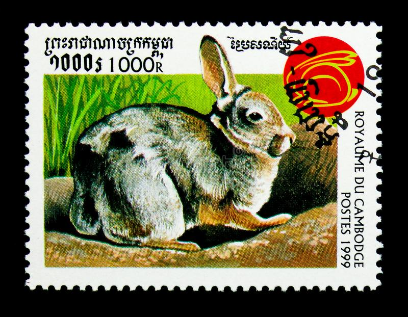 Rabbit Family Leporidae, Year of the Rabbit serie, circa 1999. MOSCOW, RUSSIA - NOVEMBER 24, 2017: A stamp printed in Cambodia shows Rabbit Family Leporidae royalty free stock photography