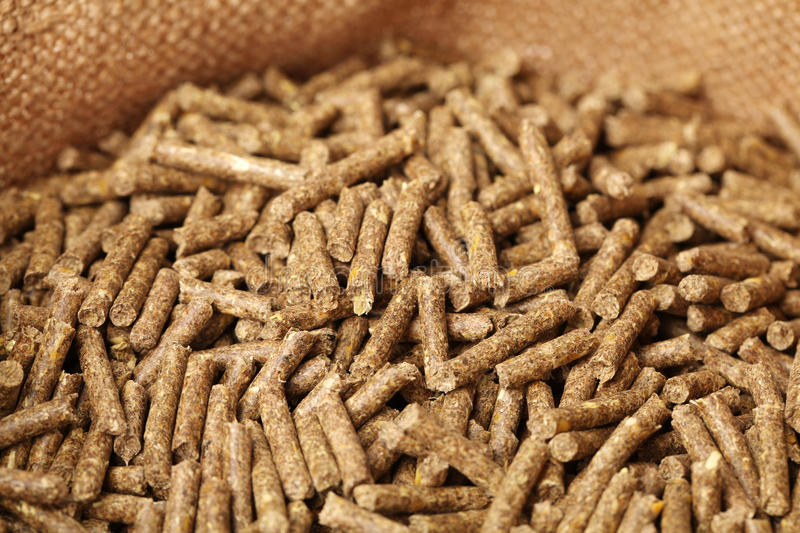 Download Rabbit feed stock photo. Image of manufactured, cattle - 33184748