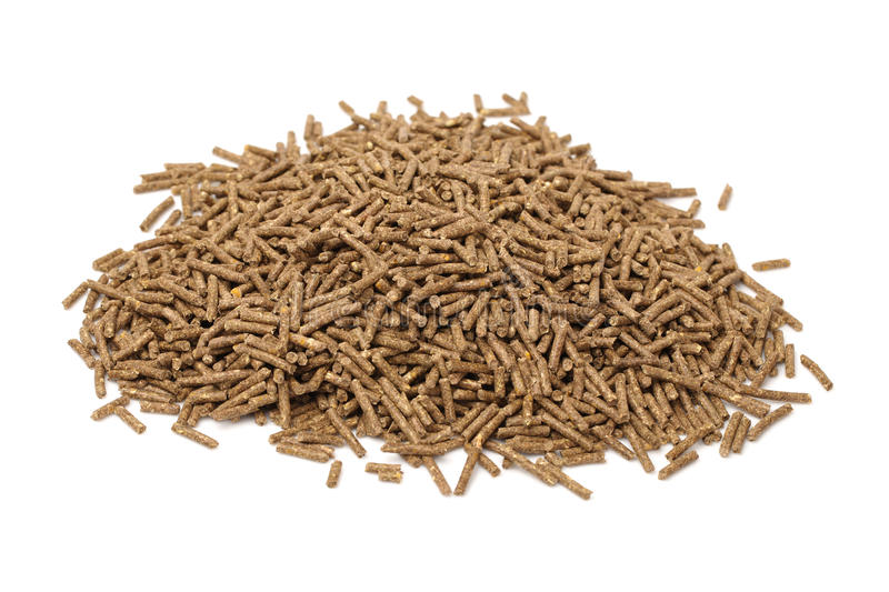 Download Rabbit feed stock image. Image of equestrian, grain, plate - 33235405