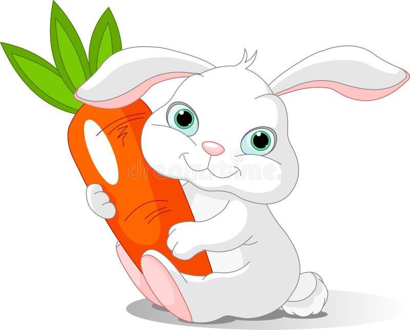 Rabbit holds giant carrot. Small lovely rabbit holds giant carrot vector illustration