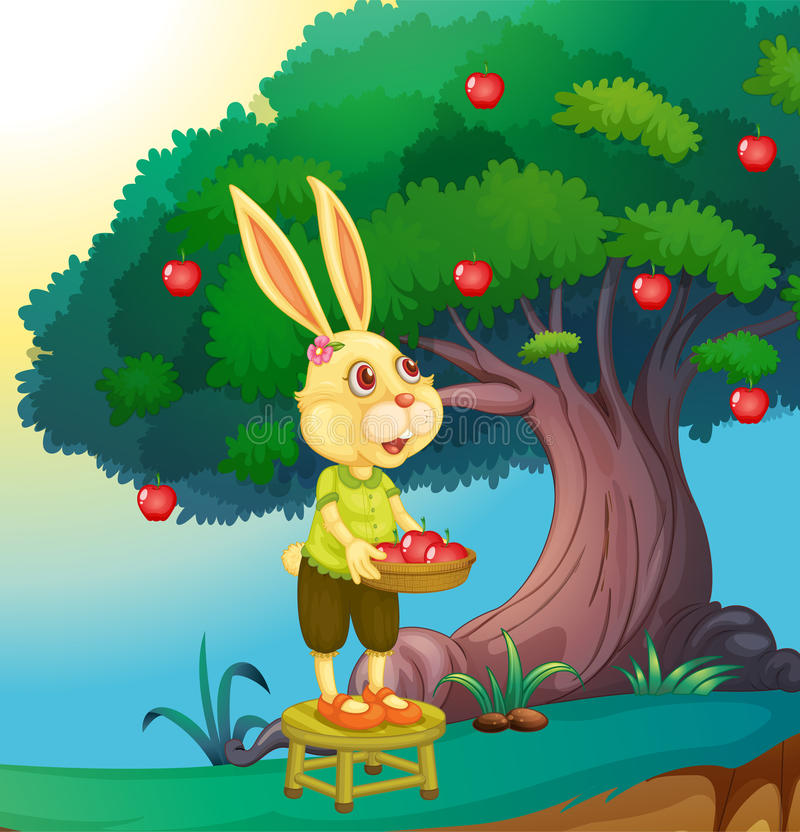 Rabbit vector illustration