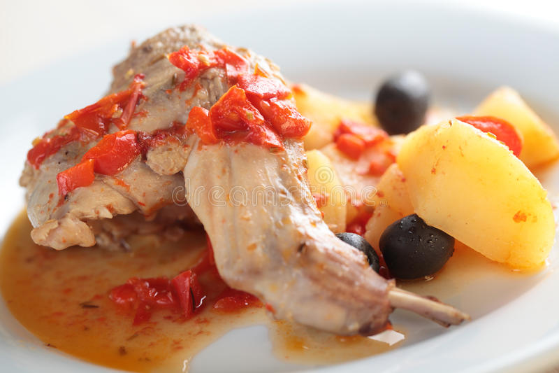 Rabbit leg with baked vegetables royalty free stock photo