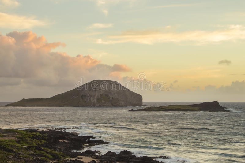 Download Rabbit And Turtle Island At Sunrise Stock Photo - Image: 31769230