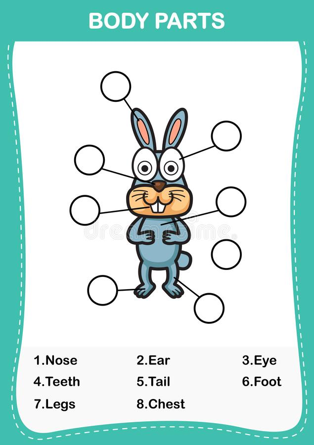 Rabbit vocabulary part of body,Write the correct numbers of body parts. Illustration of rabbit vocabulary part of body,Write the correct numbers of body parts vector illustration