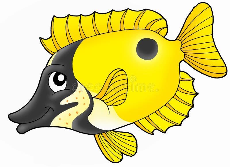 Rabbitfish de Foxface illustration de vecteur