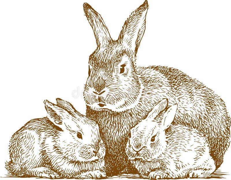 Download Rabbits stock vector. Illustration of hand, kids, mother - 25165964