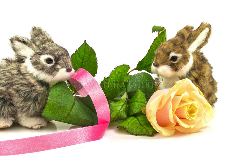 Rabbits with rose and ribbon stock photography