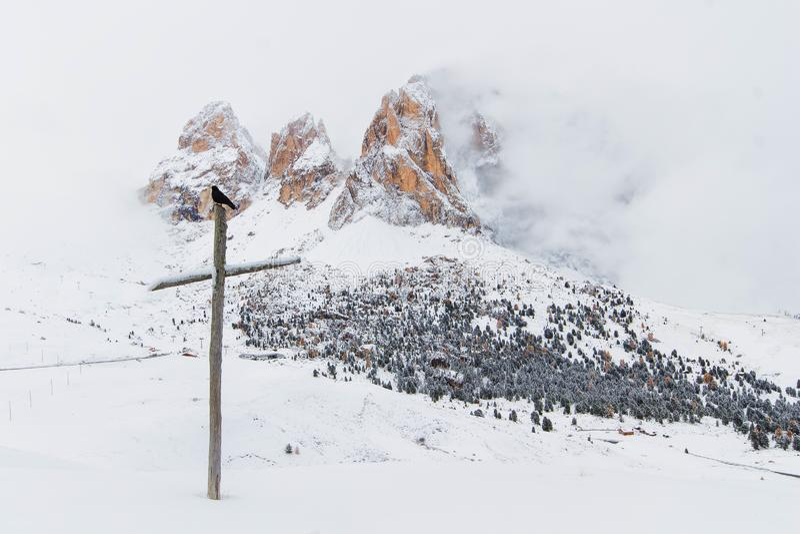 Rabe auf Kreuz in den vorderen Bergen dolomites Italien stockfotografie