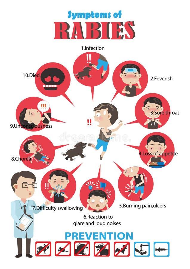 Rabies vector illustration