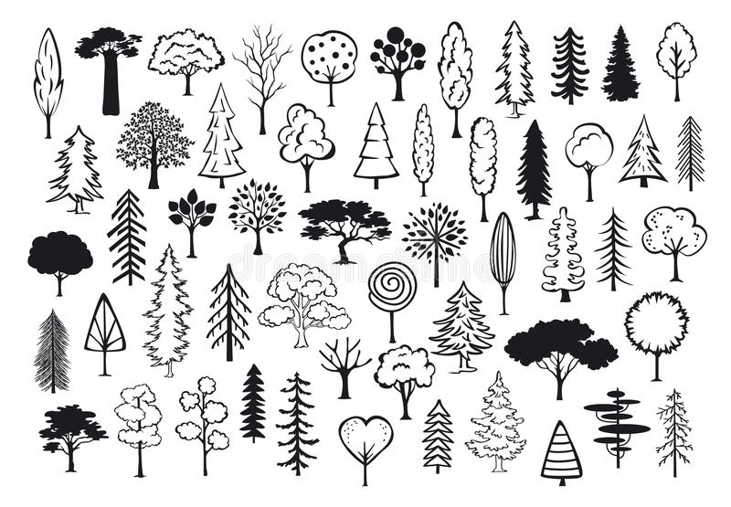 Rabiscar árvores esboçadas silhuetas do sumário das coníferas da floresta do parque ilustração do vetor