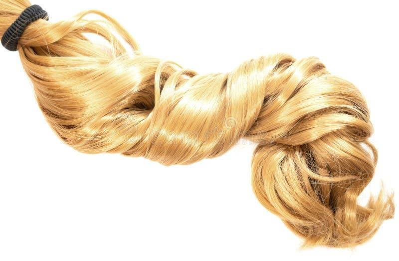 Rabo de cavalo longo do cabelo louro no fundo branco foto de stock royalty free
