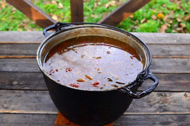 Rabo de toro or oxtail stew soup in cooking pot with chili pepper, garlic and thyme stock photography
