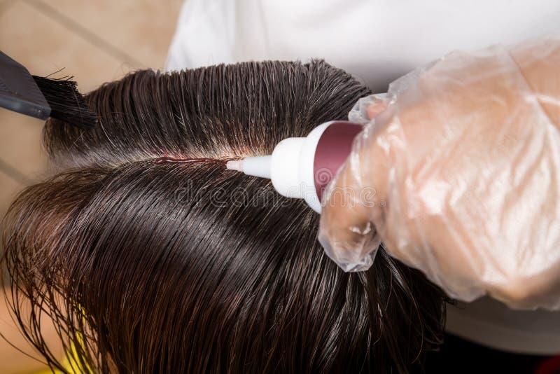 Raboteuse de cheveux appliquant le colorant chimique de couleur de cheveux sur des racines du poil image stock