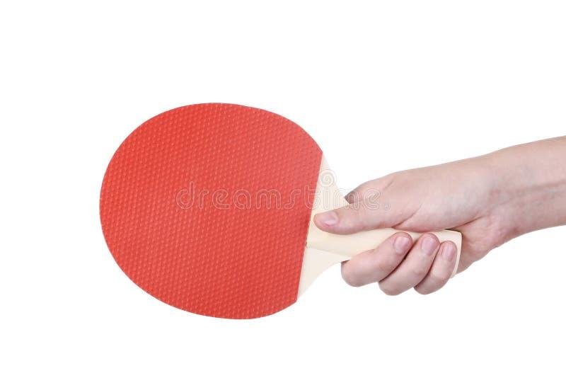 Racchetta di ping-pong della tenuta della mano immagini stock