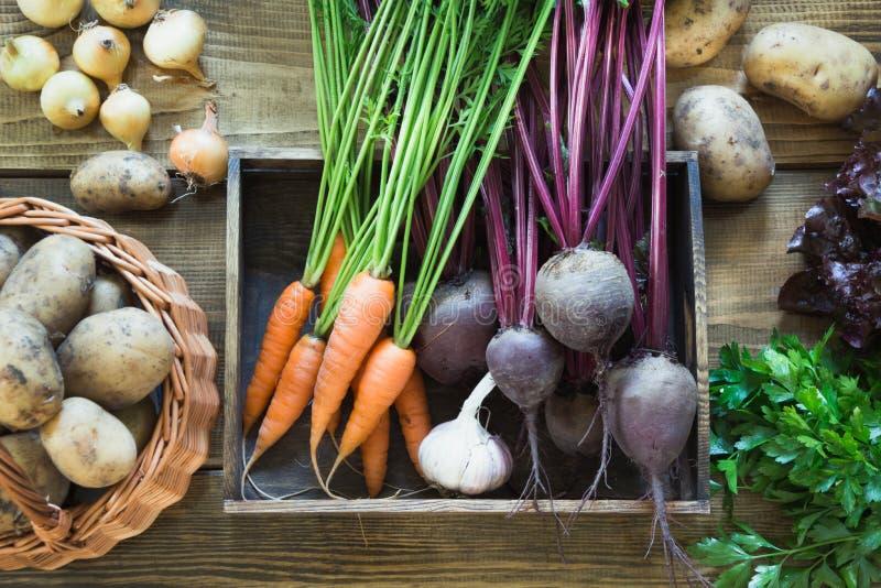 Raccolga gli ortaggi freschi dalla carota, la barbabietola, la cipolla, aglio sul bordo di legno anziano Vista superiore, stile r fotografie stock