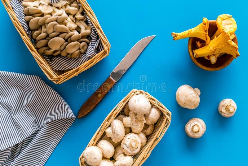 Raccolga il concetto del fungo Funghi prataioli, ostriche, merce nel carrello dei galletti vicino al coltello sulla vista superio fotografia stock libera da diritti