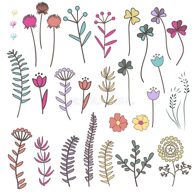 Raccolta con i fiori e le erbe di scarabocchio con le foglie illustrazione di stock