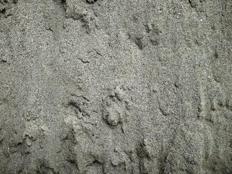 Raccolta degli ambiti di provenienza - uno strato spesso di cemento sulla terra fotografia stock