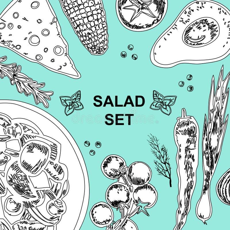 raccolta degli ingredienti dell'insalata su fondo blu Insalata e verdure illustrazione vettoriale