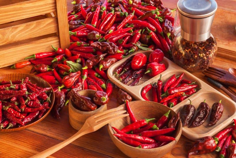 Raccolta dei peperoncini Preparando per l'essiccamento del condimento piccante Vendita delle spezie fotografia stock