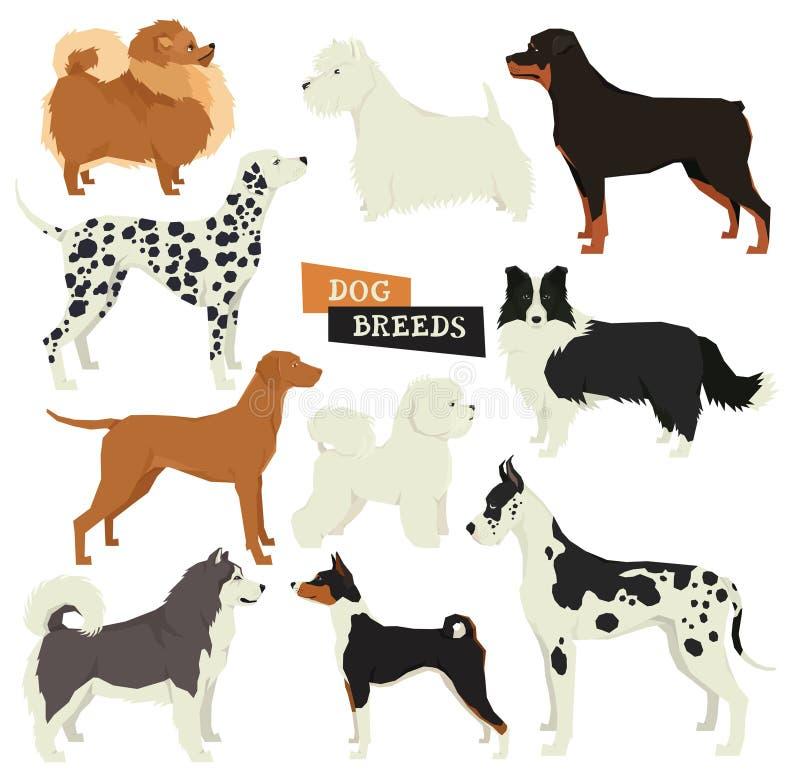 Raccolta del cane Stile geometrico Un insieme di vettore di 10 razze del cane È illustrazione di stock