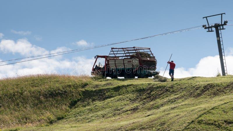 Raccolta del fieno nelle alpi svizzere fotografie stock libere da diritti
