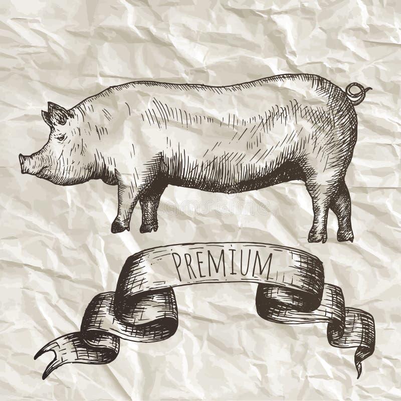 Raccolta dell'azienda agricola Elementi isolati disegnati a mano illustrazione di stock