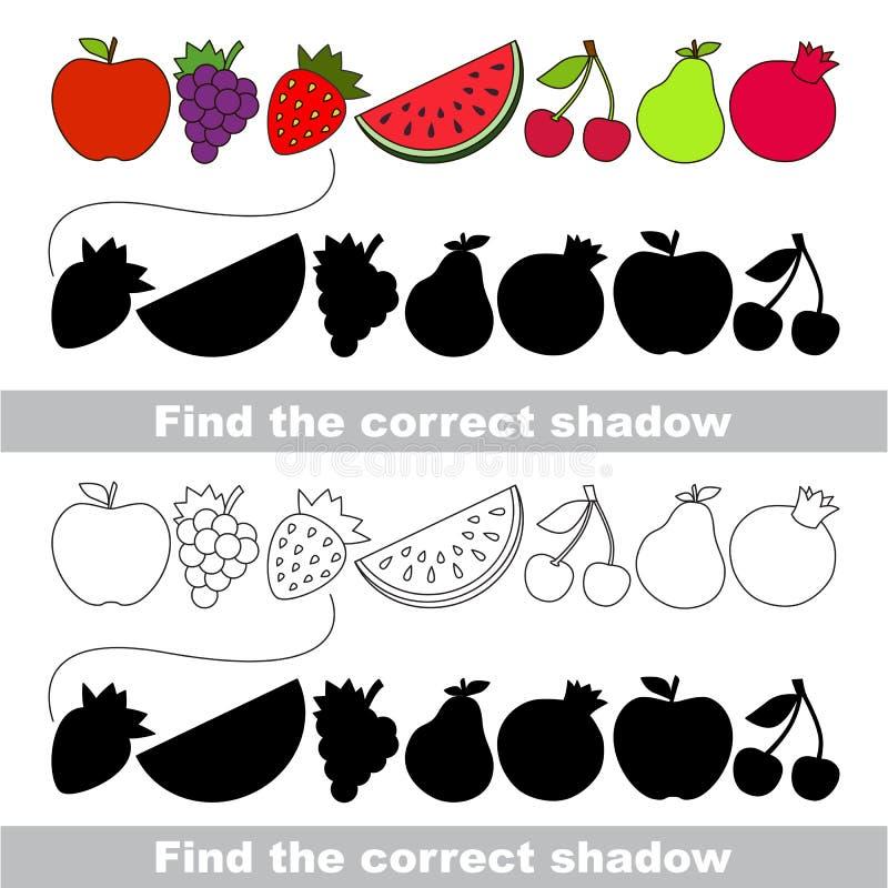 Raccolta della frutta Trovi l'ombra corretta illustrazione di stock
