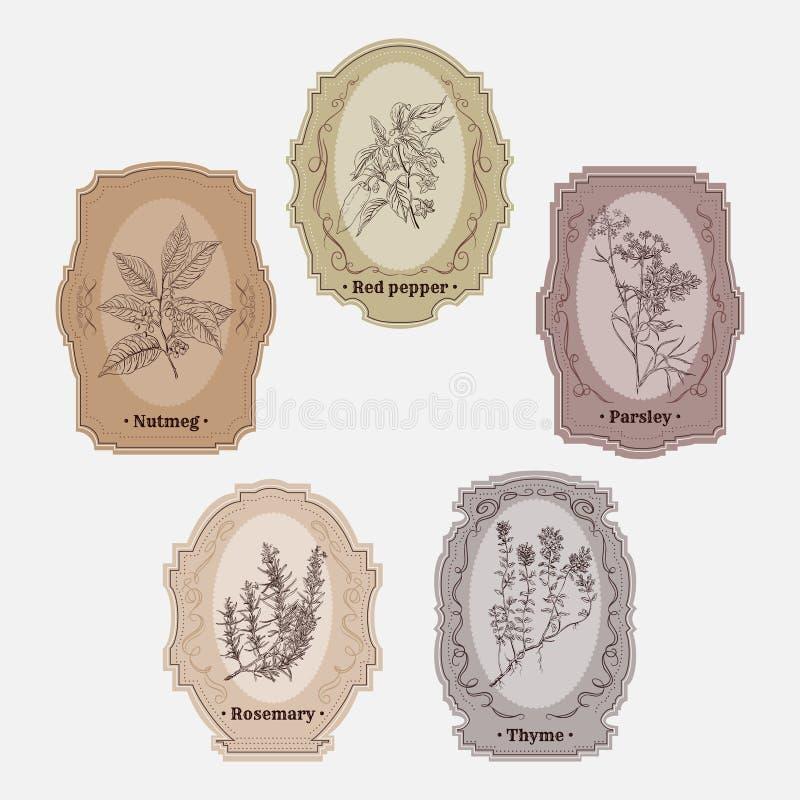 Raccolta delle etichette d'annata di stoccaggio con le erbe e le spezie illustrazione vettoriale
