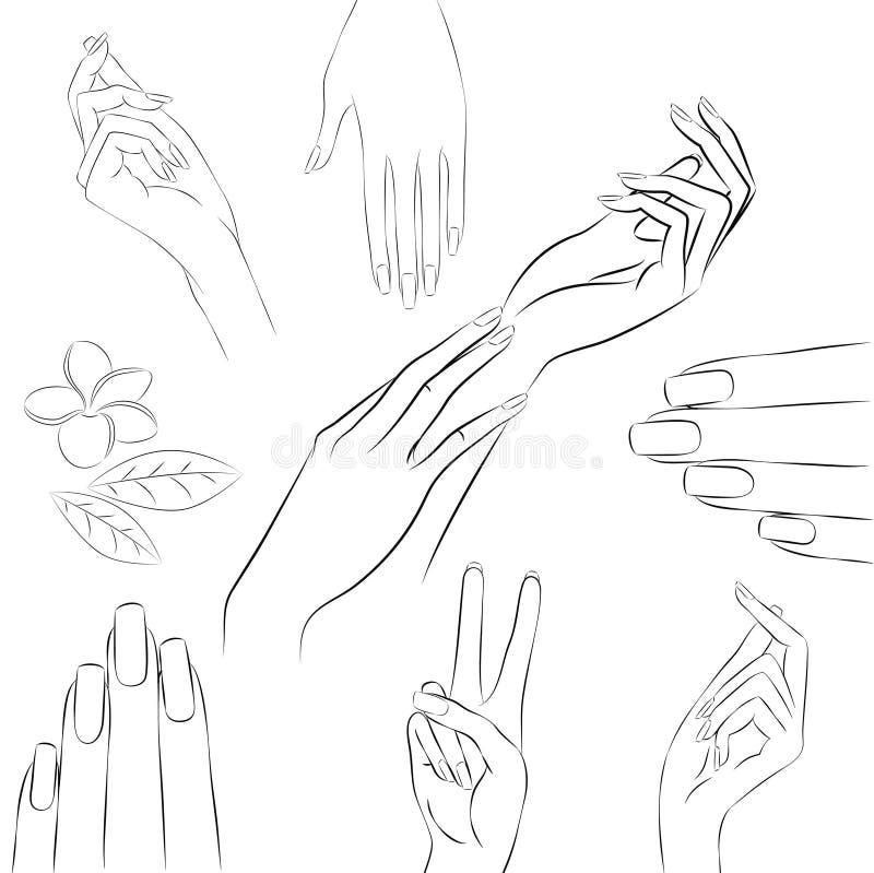 Raccolta delle mani in vari gesti, manicure illustrazione di stock
