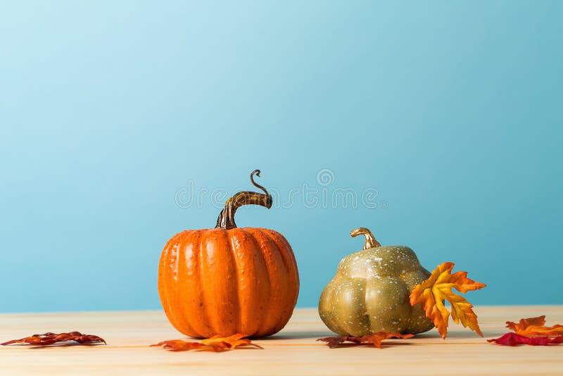 Raccolta delle zucche di autunno fotografia stock