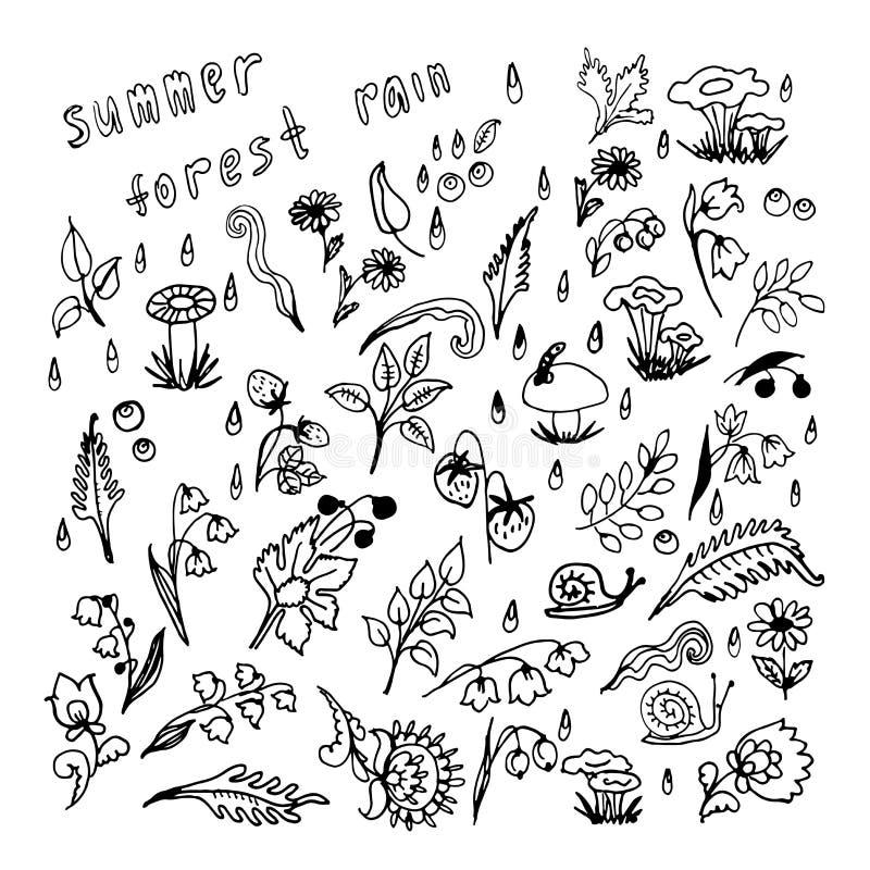 Download Raccolta Di Pioggia Nell'illustrazione Di Estate Illustrazione Vettoriale - Illustrazione di grafico, carta: 56890496