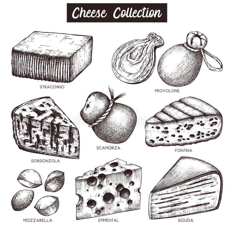 Raccolta di VVector degli schizzi del formaggio Illustrazioni disegnate a mano dell'alimento su fondo bianco Insieme d'annata deg illustrazione di stock