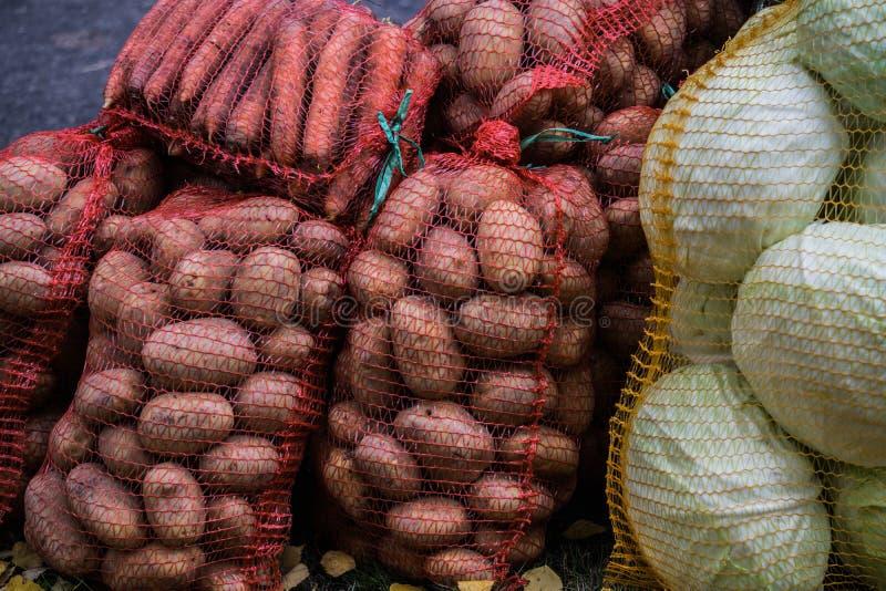 Raccolti in sacchi di carote, patate e teste di cavolo cappuccio immagine stock libera da diritti